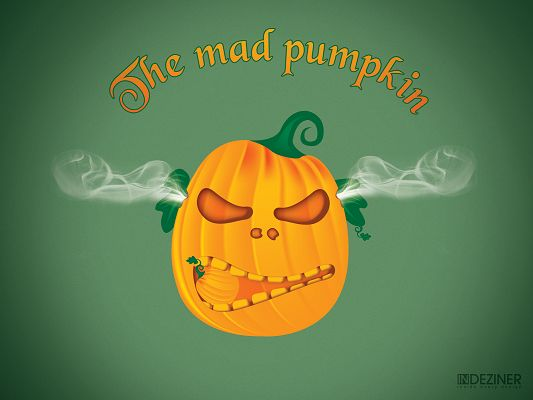 click to free download the wallpaper--Funny Pics of Fruits, Angry Pumpkin, Smoke is Around Its Ears, It is So Much Irritated