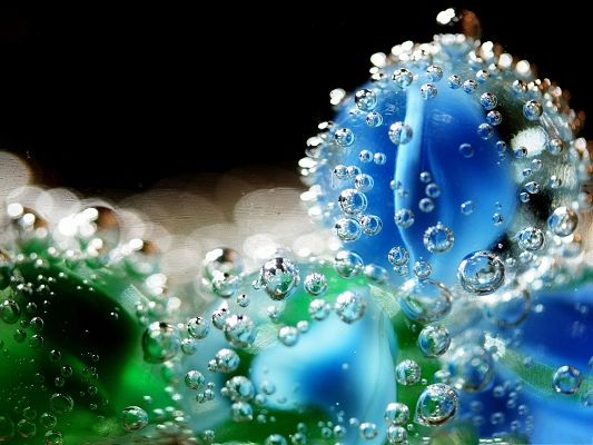 click to free download the wallpaper--HD Water Drops Wallpaper, Flowers Underwater, Blue and Nice Look