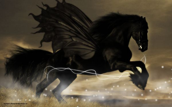 click to free download the wallpaper--HD Wide Wallpaper, Black Horse in the Run, the Black Knight