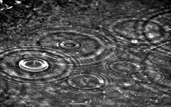 click to free download the wallpaper--High Quality Wallpaper Desktop - Rainy Day, Causing Nice Little Ripples