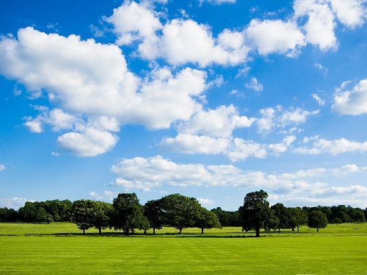 High Resolution Wallpapers, Peaceful Meadow Under the Blue Sky, Impressive Scene