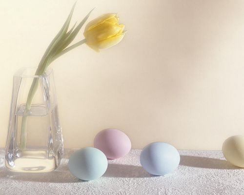 click to free download the wallpaper--Holidays Image, Easter Eggs and Flower, All in Light Color, Clean and Fresh Scene