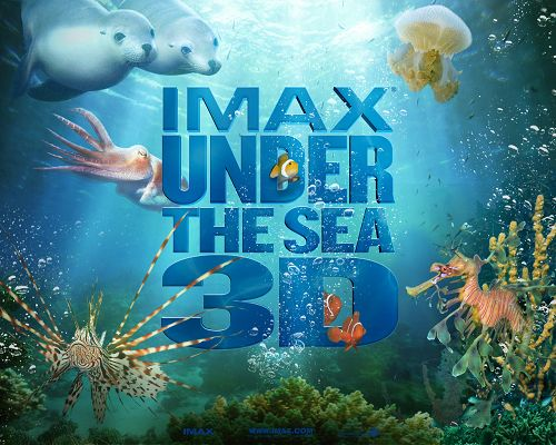 click to free download the wallpaper--IMAX Under The Sea Post in 1280x1024 Pixel, All Fishes Swimming Around Blue Letters, What an Amazing World! - TV & Movies Post