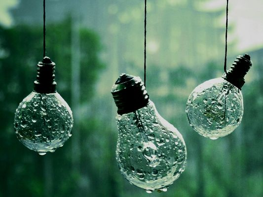 click to free download the wallpaper--Image of Beautiful Nature Landscape, Rain on Lightbulbs, Gaining a Clean World