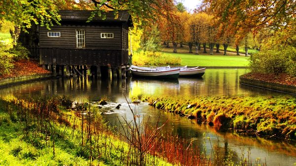 Images of Beautiful Sceneries - A Black Little House Over the River, a Full Eye of Green and Natural Scene