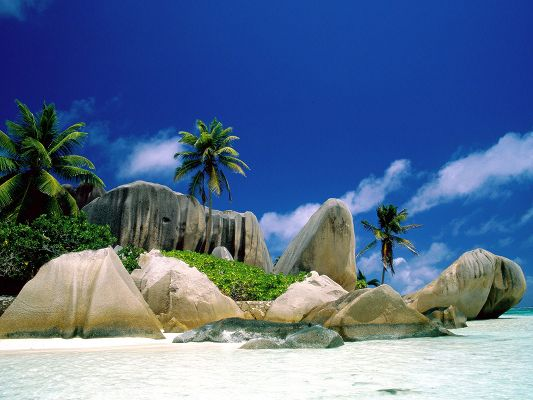 click to free download the wallpaper--Images of Natural Landscape, La Digue Islands, Green Trees and Brown Stones, Amazing Scene