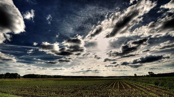 click to free download the wallpaper--Impressive Scene of Nature - The Dark and Cloudy Sky, Fields of Green Grass, Combine a Great Scene