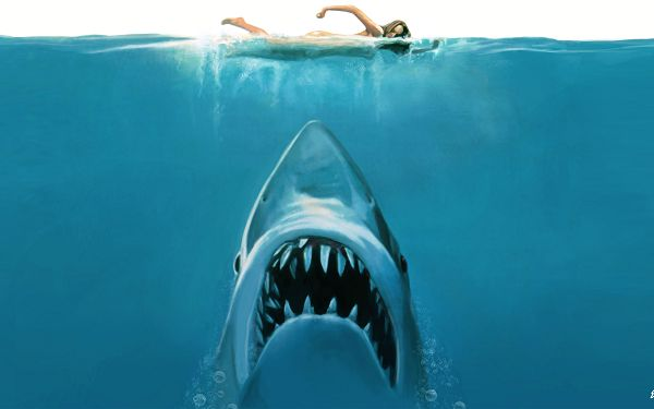 Jaws Movie Concept in 2560x1600 Pixel, Is the Lady Blind to Danger? Wish the Whale Has a Small Mouth - TV & Movies Post