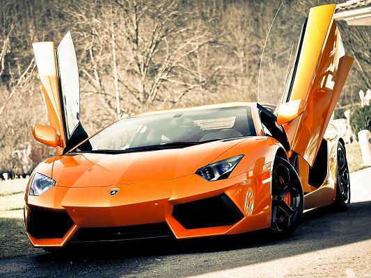 click to free download the wallpaper--Lamborghini Aventador Car Wallpaper, Nice Super Car Stretching Its Wings, Great in Look