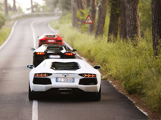 click to free download the wallpaper--Lamborghini Cars Wallpaper, Three Super Cars One After Another, What a Scene!