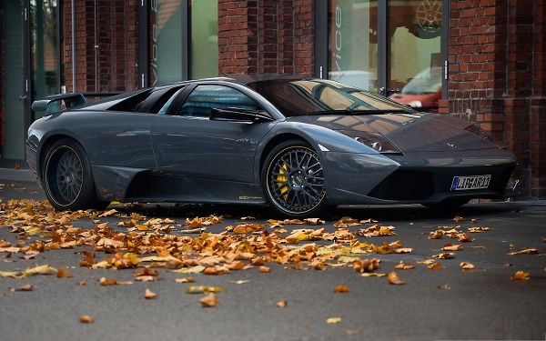 click to free download the wallpaper--Lamborghini Sport Cars Wallpaper, Top Car in the Stop, Golden Leaves, Autumn Scene