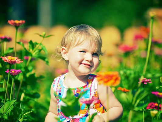 click to free download the wallpaper--Man and Nature, Smiling Baby Boy Among Zinnia Flowers, Great in Look