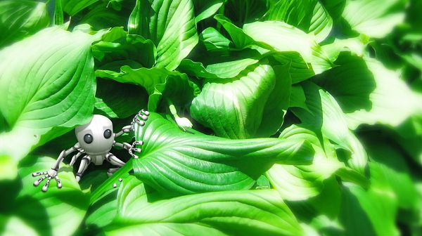 click to free download the wallpaper--Natural Scenery Wallpaper - A Cute Little Robot Among Green Leaves, It is Like an Ant