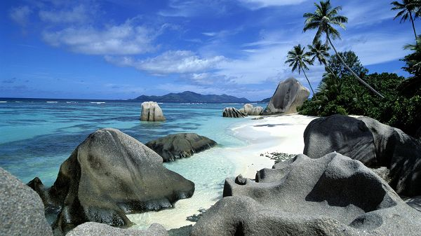 Natural Scenery Wallpapers - Both the Sky and the Sea Quite Blue, Coconut Trees Quite Welcoming