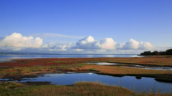 Natural Scenery image - Both the Sky and the Sea Blue, Water Fields by the Sea, White Flowing Clouds