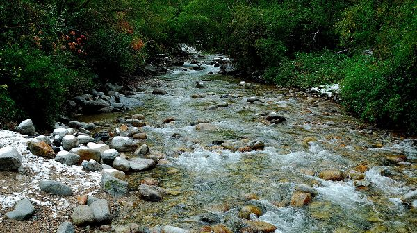 Natural Scenery image - Clear River and Clean Stones, Great Natural Scene That Fits