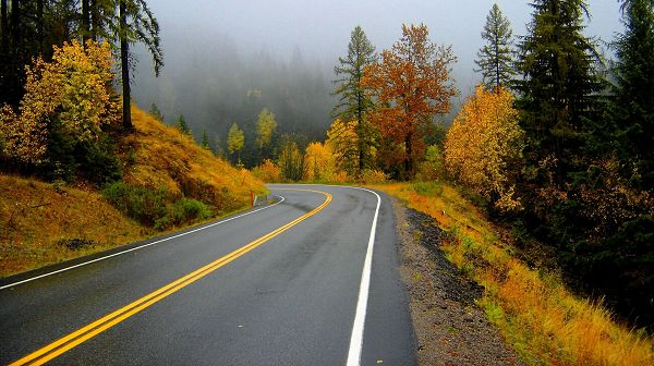 Natural Scenery images - Narrow and Clean Road, an Impressive and Misty Scene