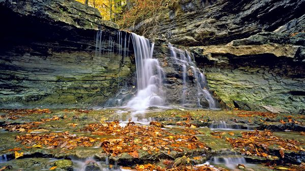 click to free download the wallpaper--Natural Scenery photo - Fallen Leaves on the Bottom of Waterfall, a Typical Autumn Scene