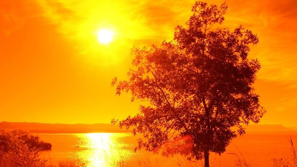 Natural Scenery photo - The Bright Sun in Completely Golden Lights, Shall Fit Various Devices