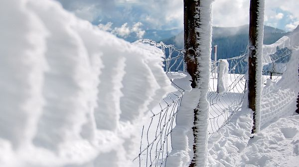 click to free download the wallpaper--Natural Scenery picture - Snow-Capped Fences and Nests, Presenting a White and Pure World