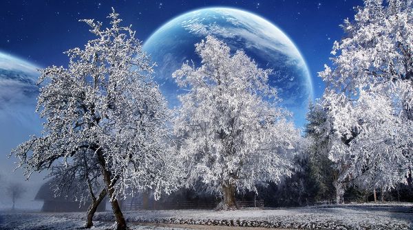 click to free download the wallpaper--Natural Scenery pictures - Trees Covered with Thick Snow, Planets Serve as Background, Too Good to be True