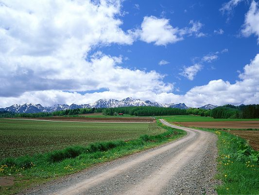 click to free download the wallpaper--Nature Countryside Landscape, Green Grass Alongside the Narrow Clean Road