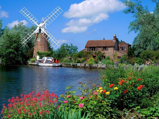 Nature Landscape Image, Holland Country Scene, Colorful and Blooming Flowers