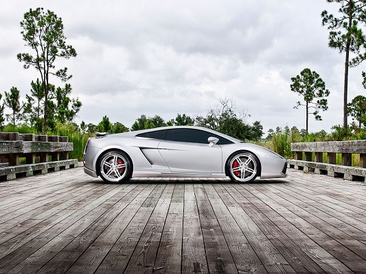 click to free download the wallpaper--Nature Landscape Images, Silver Gallardo on Bridge, Great Natural Scene Alongside