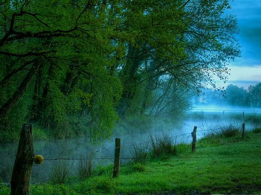 click to free download the wallpaper--Nature Landscape Pics, Green Plants Along the Peaceful River, Foggy Scene
