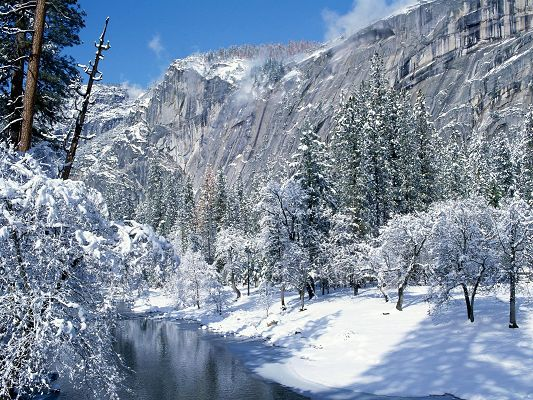 click to free download the wallpaper--Nature Landscape Pics, Snow Flocks, White Trees, River in the Flow