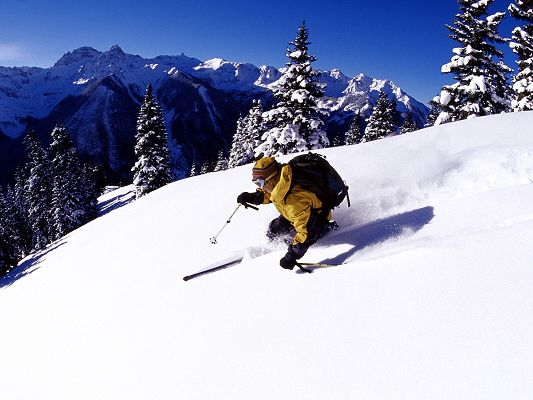 click to free download the wallpaper--Nature Landscape of the World, San Juan Mountains, a Skiing Man, Enjoy Yourself!