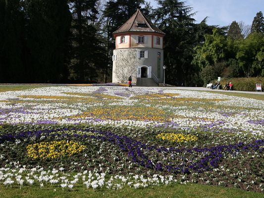 click to free download the wallpaper--Nature Landscape with Flowers, Spring Mainau, Short Castle, Tall Green Trees