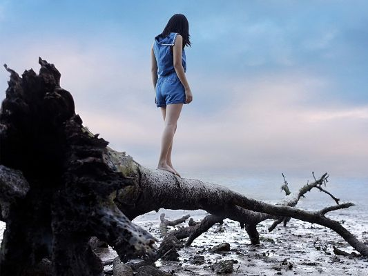 click to free download the wallpaper--Nice Girl Pic, Beautiful Girl Walking on Branch, Toward the Sea?