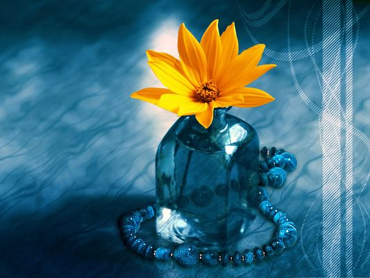click to free download the wallpaper--Orange Flowers Image, Blooming Flowers Around Blue Necklace, Amazing Scene