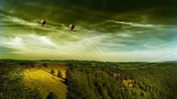 click to free download the wallpaper--Photos of Beautiful Scenery - The Balloons Are in Order with the White and Thin Lines, the Green Plants Beneath