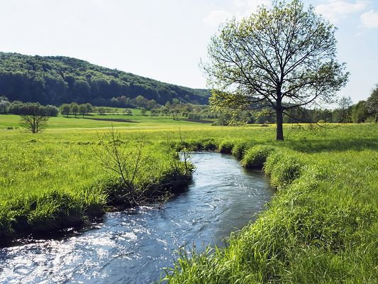Pic of Nature Landscape, River in Bavaria, Green Grass, the Blue Sky
