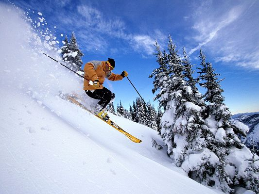 click to free download the wallpaper--Pics of Nature Landscape, Man Skiing through Thick Snow, the Blue Sky