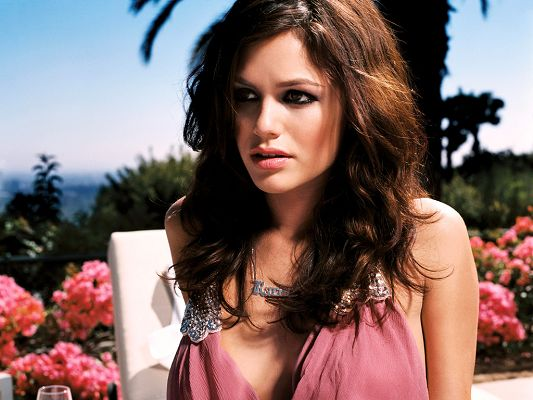 click to free download the wallpaper--Played in FOX's The O.C., Jumper and New York, I Love You, Body Figure and Face Are Both Perfect, Never Fail to Draw the Attention - HD Rachel Bilson Wallpaper