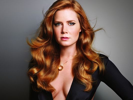 click to free download the wallpaper--Played in Julie & Julia, Leap Year and The Fighter, in Blond Curely Hair and Graceful Pose, She Has Everything to be a Super Star - HD Amy Adams Wallpaper