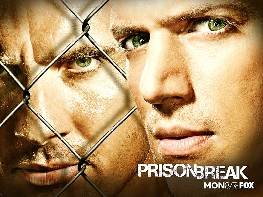 Prison Break TV Series 2 Post Available in 1600x1200 Pixel, Tight Metal Nest Lies Between the Brothers, When Will be Break It? - TV & Movies Post