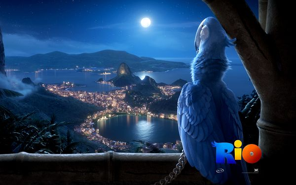 click to free download the wallpaper--Rio Movie Post in 1920x1200 Pixel, Beautiful Female Bird All On Herself, Where is Her Mr.Right? - TV & Movies Post