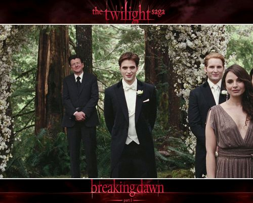 click to free download the wallpaper--Romantic TV Show Images, Edward Waiting for Bella, Welcome to the Wedding Party