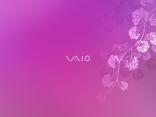 click to free download the wallpaper--Sony VAIO 6 HD Post in Pixel of 1600x1200, Typical Sony Brand Put on Pink Background and Pink Flowers, a Great Fit - TV & Movies Post