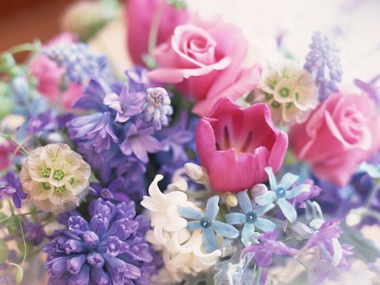 click to free download the wallpaper--Spring Flowers Picture, Colorful Flowers Bouquet, Fresh and Clean Scene