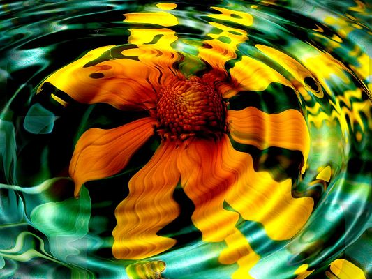 Sunflower in Water HD Post in Pixel of 1600x1200, Flower Making Various Ripples, It is Indeed Great Scene, Shall be Quite a Fit - HD Natural Scenery Wallpaper