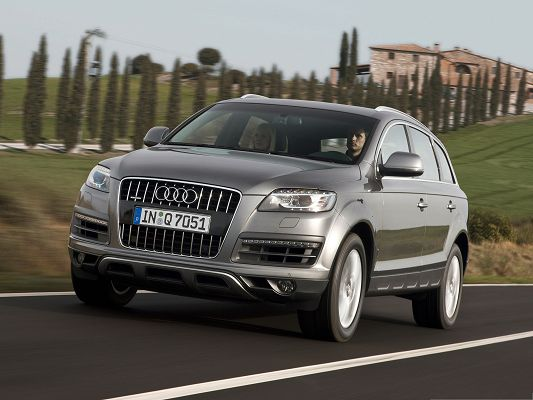click to free download the wallpaper--Super Cars Background, Brown Audi Q7 in Great Speed, Green Tall Trees Alongside