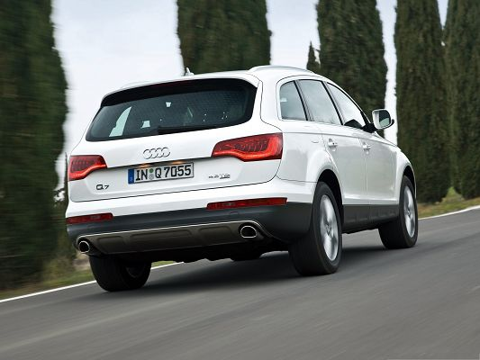 click to free download the wallpaper--Super Cars Background, White Audi Q7 Quattro Car on Slope, Tall Green Trees Alongside