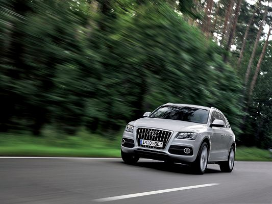 click to free download the wallpaper--Super Cars Picture, Audi Q5 in Incredible Speed, Great Nature Scenery Alongside