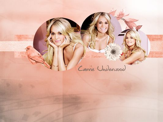 click to free download the wallpaper--Sweet Carrie Underwood Wallpaper, Loves Smiling, She is Quiet and Beautiful