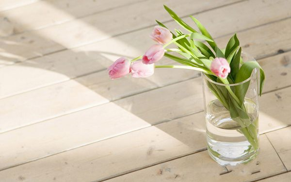 click to free download the wallpaper--Sweet Flowers Picture, Pink Flowers in Glass, Clean Floor, Interior Scene